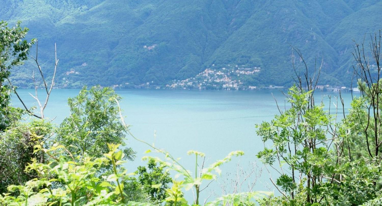 RUSTICO TRONZANO Pino sulla Sponda del Lago Maggiore ...